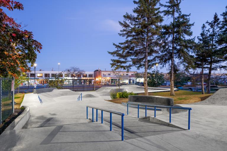 Parc de planche à roulettes, parc Delorme, Montréal, 2019
