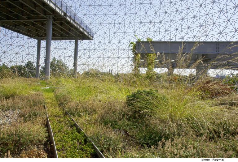 Greening of the Biosphère, Île Sainte-Hélène, Montreal, 2010
