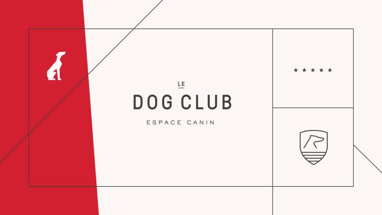 Dog Club, Montréal, 2017