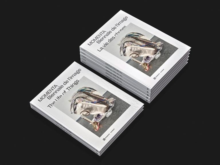 MOMENTA Biennale de l'image, Publication, 2019
