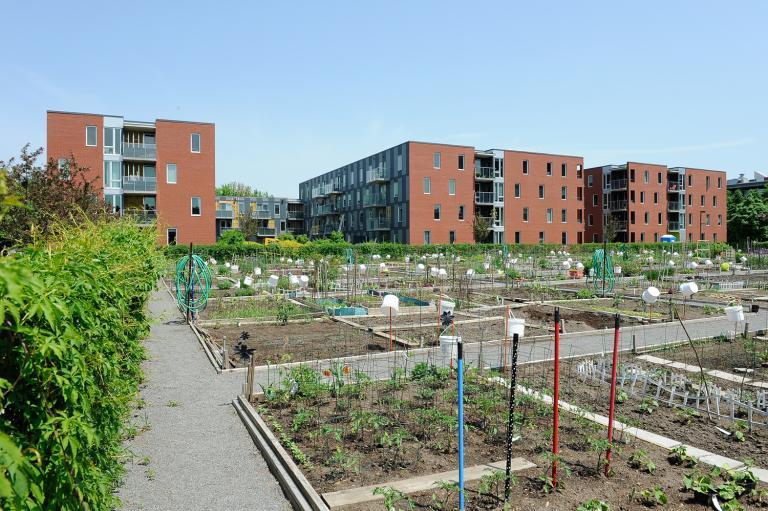 Benny Farm, Montréal, 2006