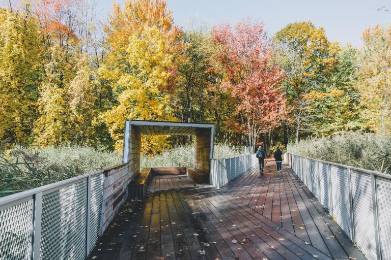 Parc-Nature de la Pointe-aux-Prairies, Montréal, 2019