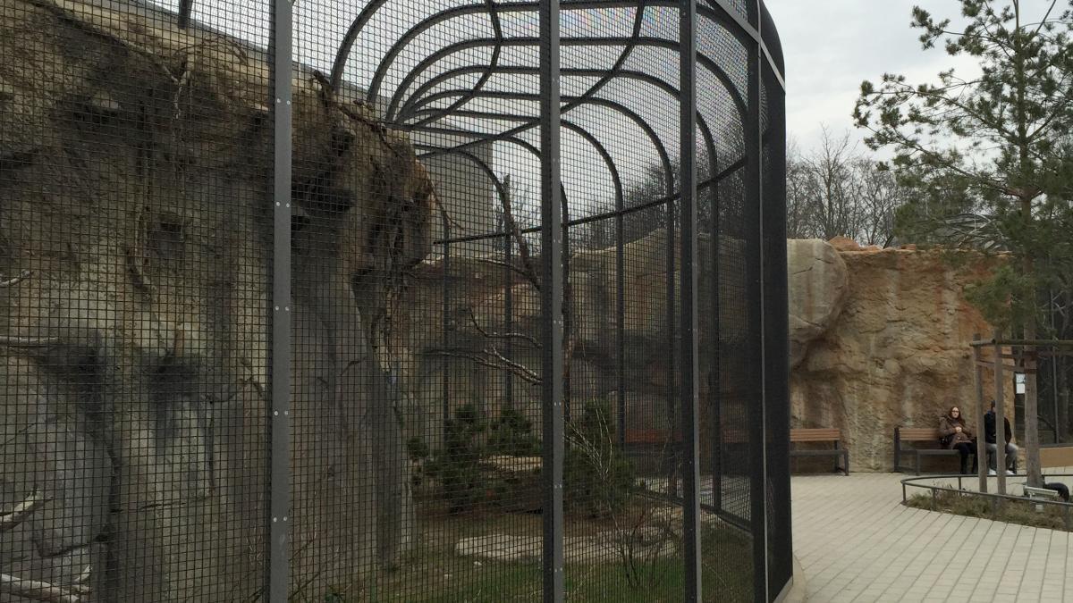 Cages, Zoologischer Garten Berlin