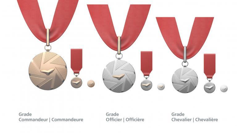 Famille des médailles
