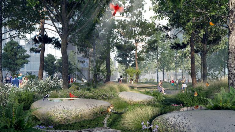 McGill College, Reinventing the Avenue Competition, Winning Proposal, Montréal, 2020